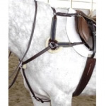 English Breastplates & Martingales