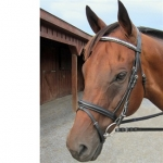 Nunn Finer Biko Flash Bridle with Reins - Silver Clincher Raised Bridle