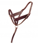 Tory Leather - Foal Slip Halter With Wide Cheek