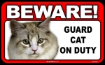 BEWARE Guard Cat on Duty Sign - Coon Cat
