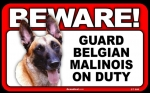 BEWARE Guard Dog on Duty Sign - Belgian Malinois