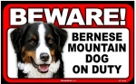 BEWARE Guard Dog on Duty Sign - Bernese Mountain Dog