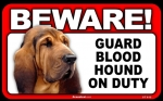 BEWARE Guard Dog on Duty Sign - Blood Hound