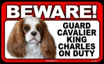 BEWARE Guard Dog on Duty Sign - Cavalier King Charles