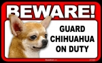 BEWARE Guard Dog on Duty Sign - Chihuahua