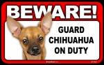 BEWARE Guard Dog on Duty Sign - Chihuahua - Tan