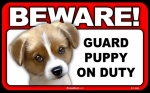 BEWARE Guard Dog on Duty Sign - Puppy