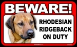 BEWARE Guard Dog on Duty Sign - Rhodesian Ridgeback