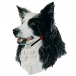 Border Collie Head Shaped Clock