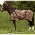 Brown Plaid Day Sheet  54