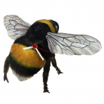 Bumble Bee Shaped Clock