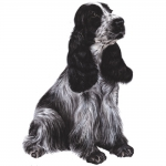Cocker Spaniel Jumbo Dog Magnet