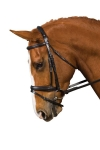 COLLEGIATE COMFORT CROWN CRANK FLASH BRIDLE