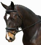 COLLEGIATE COMFORT CROWN PADDED CRANK W/REMOVABLE FLASH BRIDLE