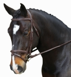 COLLEGIATE COMFORT CROWN RAISED PADDED FANCY STITCHED W/REMOVABLE FLASH BRIDLE