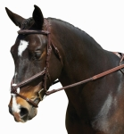COLLEGIATE COMFORT CROWN RAISED PADDED FANCY STITCHED FIGURE 8 BRIDLE