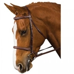 COLLEGIATE DOUBLE BRIDLE