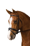 COLLEGIATE PADDED CRANK BRIDLE