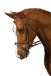 COLLEGIATE PLAIN RAISED BRIDLE WITH FLASH