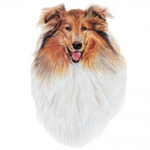 Collie Jumbo Dog Magnet