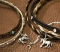 Cowboy Collectibles Horse Hair Choker with Crystal Stones
