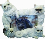 Dog Picture Frame - Himalayan Cats (4x6)