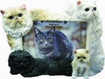 Dog Picture Frame - Persian Cats (4x6)