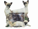 Dog Picture Frame - Siamese Cats (4x6)
