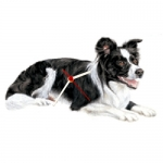 Dog Shaped Clock - Border Collie
