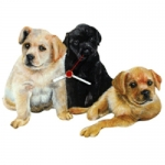 Dog Shaped Clock - Labrador Retriever Pups