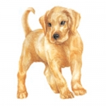 Dog Shaped Clock - Yellow Lab Puppy