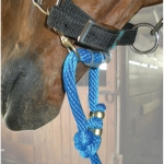 Easy Lead - Poly Horse Lead Horse