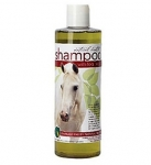 Emerald Valley Shampoo with Tea Tree Oil