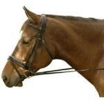 Exselle Elite Dressage Bridle with Flash
