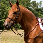 Exselle Elite Fancy High Raised Standing Breastplate