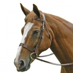 Exselle Elite Traditional Fox Hunt Bridle with Reins
