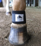 Fenwick Equestrian Liquid Titanium Therapeutic Pastern Wrap - Pair