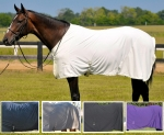 Fenwick Equestrian Sporty Dress Sheet