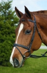 HDR Event Bridle With Rubber Reins - HAVANA, COB