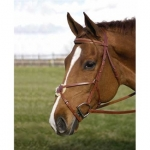 HDR Pro Figure 8 Bridle with Laced Reins