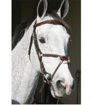 HDR Pro Stress Free Raised Figure 8 Bridle
