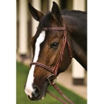 Henri De Rivel Leather Overlay Snaffle Bridle w/ Laced Reins
