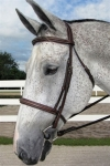 Henri De Rivel Pro Stress Free Fancy Padded Bridle