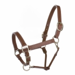 Horze Aston halter, leather (25mm)