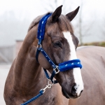 Horze Basel Halter and Lead w/ Faux Fur Padding