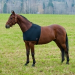 Horze ComForce Shoulder Rug Guard