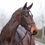 Horze Constance Bridle with Fancy Stitching