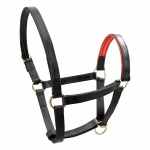 Horze Finn-Tack Leather Halter with Soft Padding