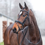 Horze Prague Shiny Bridle