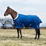 Horze Royal Equus Winter Rug 840D Mid Weight Turnout Blanket
